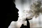 Spiritual Use of Cannabis – Terence McKenna (Video)