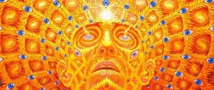 The Psychedelic Experience by Warrior Poet Aubrey Marcus (Video)