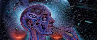 Psychedelic Spirit Paintings, Alex Grey Art Gallery
