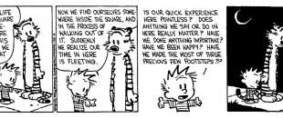 Calvin and Hobbes – The Existential Buddhist (Comic Strip)