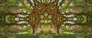 Surreal Kaleidoscopic Portals by Matt Walford (Photo Gallery)