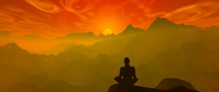 Magic Mushrooms Reduce Selfish and Depressive Brain Activity (Study)