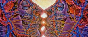 Psychedelic Drugs, Technologies of Ecstasy – Jason Silva