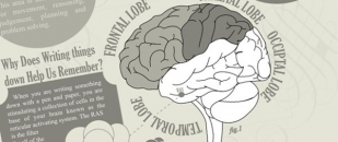 How Does Writing Affect Your Brain? (Infographic)