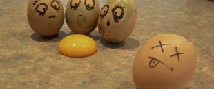 Funny Egg Drawings (Photo Gallery)