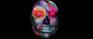 Stop Motion: Life, Death, Rebirth and Face Paint (Video)
