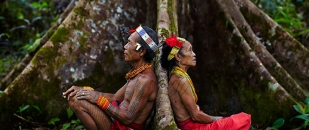 Ayahuasca Is Helping Western Minds Align with the Earth's Vibrations