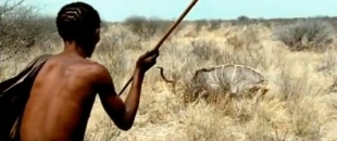 Persistence Hunting, Footage of Tribesman Chasing Prey – BBC Life of Mammals (Video)