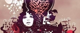 Terence McKenna – The Psychedelic Experience is Illegal Because it Promotes an Open Mind