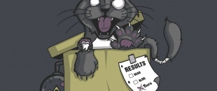 The Genius of Schrödinger's Cat Paradox Experiment (Video)