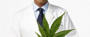 Our Government Holds a Patent for Medical Cannabis, Why is it Illegal? – Dr. Gupta